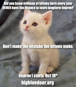 kitten-prov-oct-2016