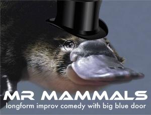 mr-mammals